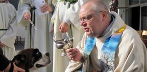 Keine Furcht vor grimmigen Hundeblicken: Tierpfarrer Franz Zeiger