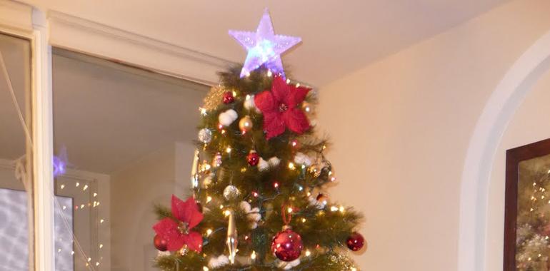 Geht gar nicht: Weihnachten, ohne ein Christbaum-Foto zu posten