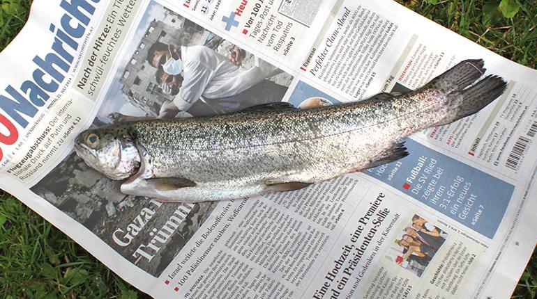 1A Fischgarage: die großformartigen OÖ Nachrichten