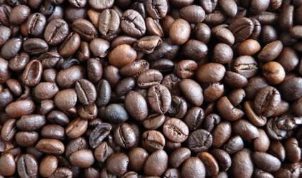 """Kaffee """"à la Katze"""" um 800 Euro/Kilo"""