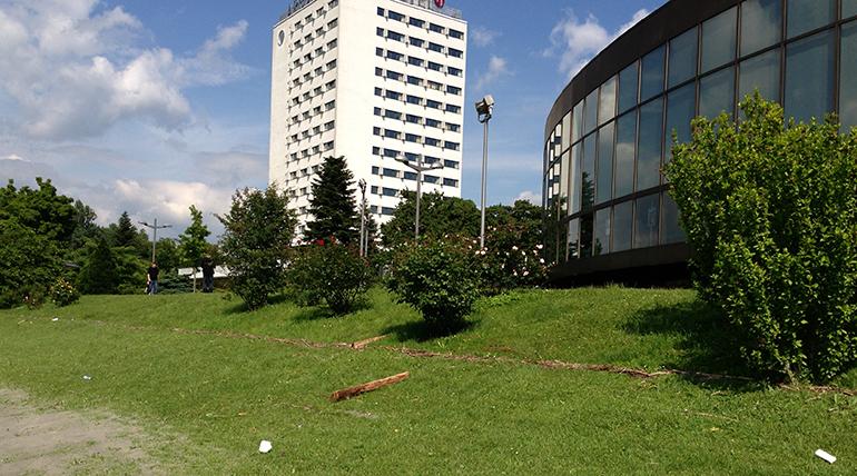 Am angeschwemmten Holz gut zu erkennen: Nur ein knapper Meter fehlte beim 2013er-Hochwasser mitten in Linz zur Dammkrone...