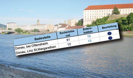 Top-Wasserqualität der Donau in Linz!