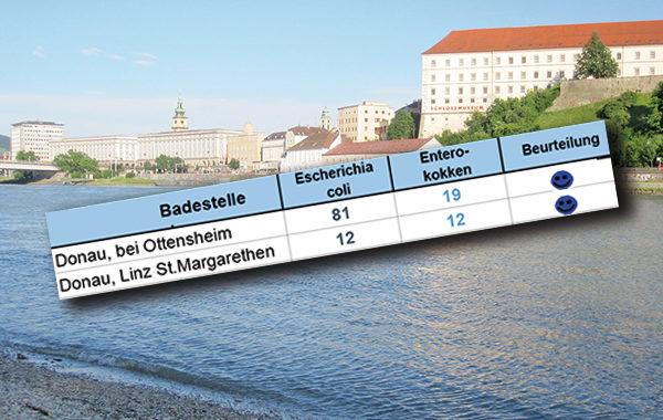 Rate Your Date - Buas Filmszene Ottensheim - Kino bei Tisch
