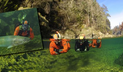 Ausflugstipp: Unterwasserkino mit 5.000 Fischen beim Traunfall