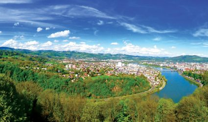 Der Linzer Wald wächst und vermehrt sich